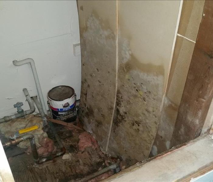 room with walls and flooring covered in mold damage