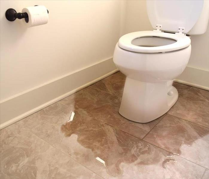 Water Damage Understanding Different Types of Water Damage Disasters