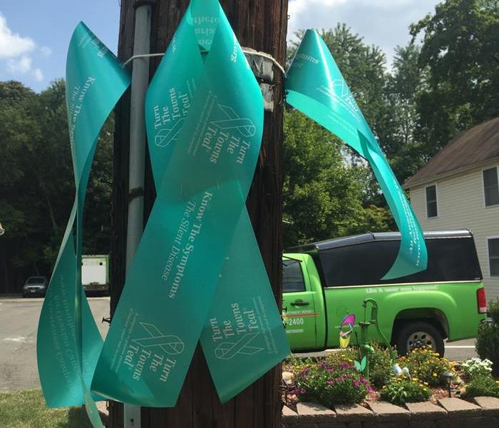 Community Turn the Town Teal