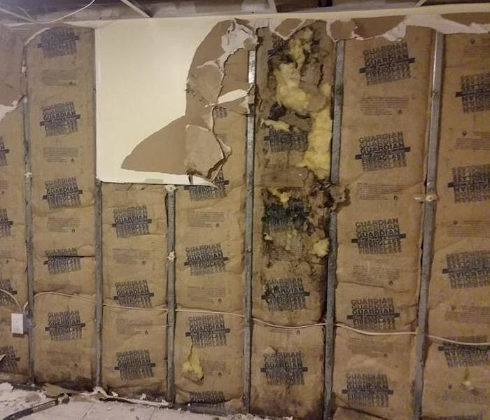 Mold Remediation Mold Found Inside a Wall