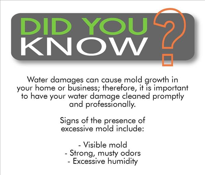 Mold Remediation Did You Know? We offer Professional Mold Remediation Services