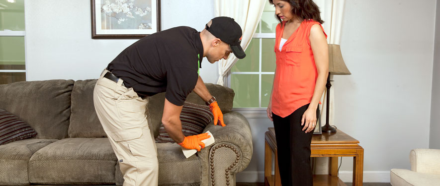 Suffern, NY carpet upholstery cleaning
