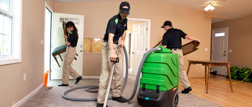 New City, NY cleaning services